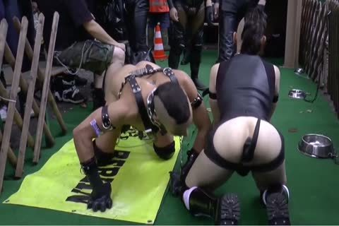 Folsom Berlin - villein And Doggyplay two From 2014