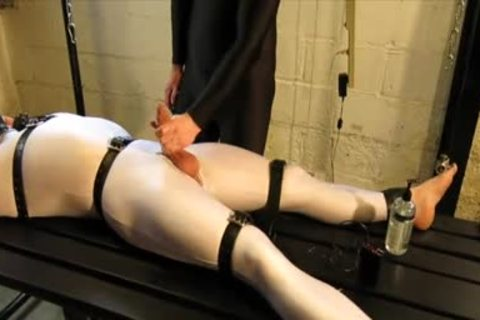 Our Live-in Pup Zathin Loooves To Be Tickled type-of. So We Put Him In smth Stretchy, thonged Him Down, And Decided To watch How Much that chap Could Take! In Part 1, We Added A Sound-activated Electro Plug Just To Keep Things Interesting. Here In P