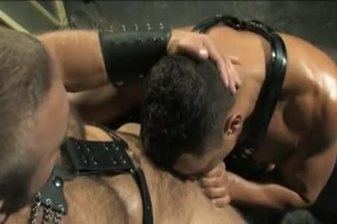 two twinks Muscle Leather