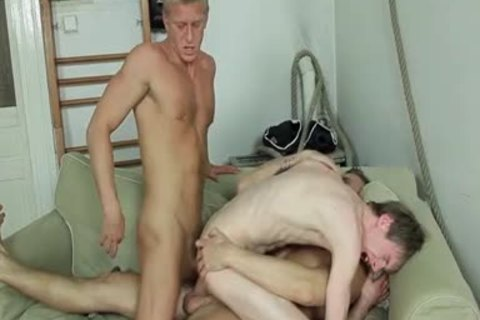 bunch-sex, giving a kiss, suck job-service stimulation job, asshole sex, B