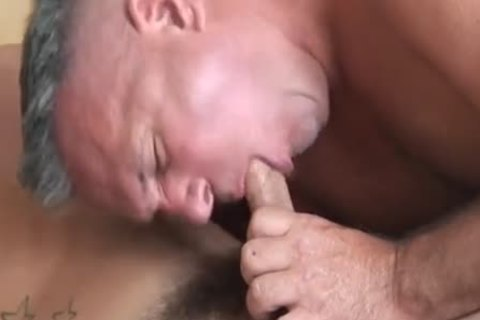 daddy plow Youngster