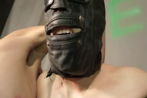 bdsm thraldom lad Whipped, Waxed, Milked