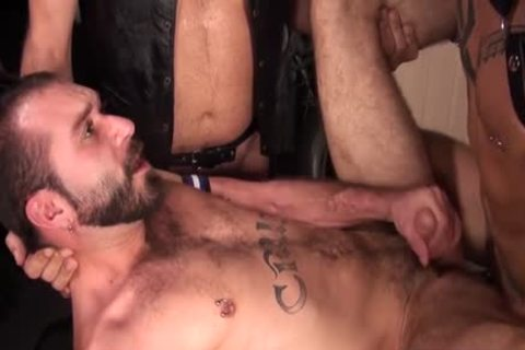 large penis Bear three-some With cumshot
