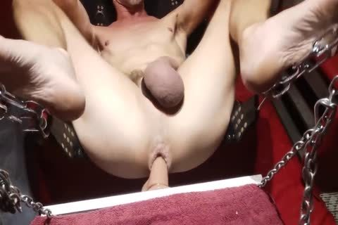 Swinging sex-toy In The Sling