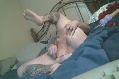 Harity bulky Bear widens pooper In thong panties Rides toy