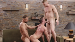 IconMale - Logan Stevens is really brown hair uncle